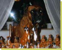Nalah-Nior vom Grossen Ritter geboren: 11.07.2008
